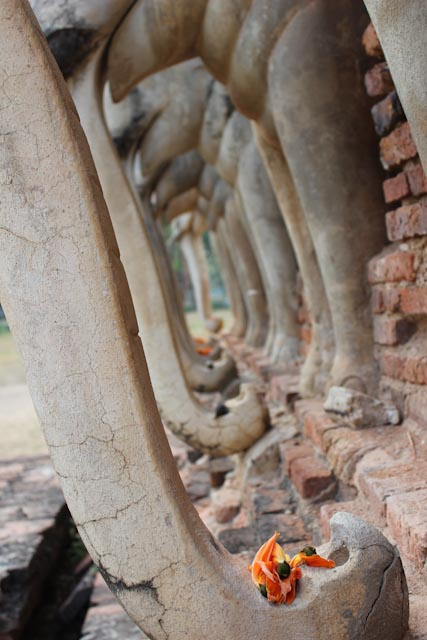 elephants – sukhothaï